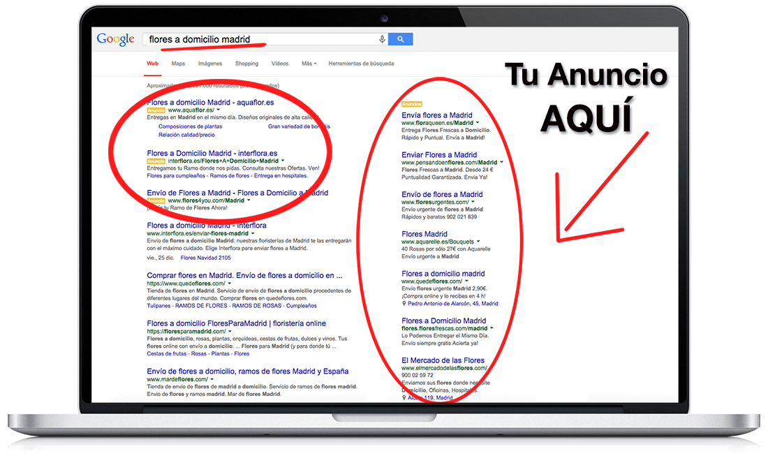 Google adwords proceso